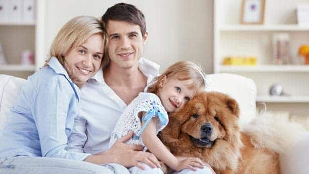 Wills & Trusts dog-young-family Direct Wills South Yorkshire
